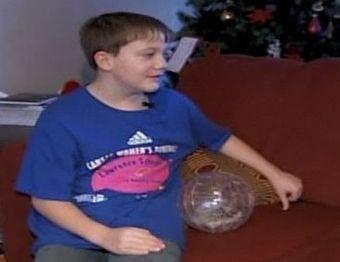 Gamer Kid Gets Hedgehog Legalized in Kansas
