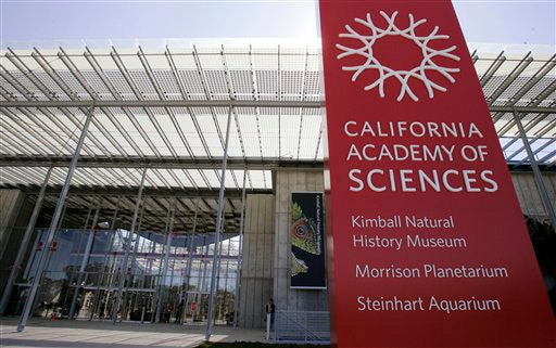 California Academy of Sciences Reopens in an Orgy of Ecotechture