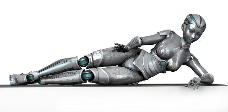 Finally, a Robot Servant to Do Your Bidding