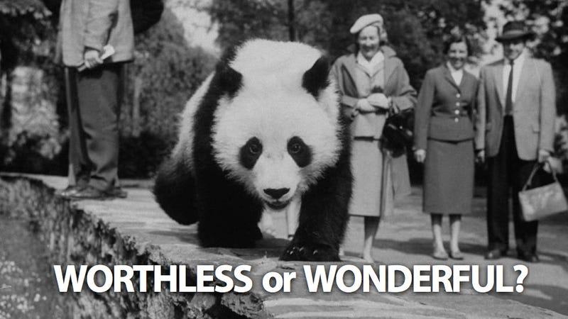 Should We Just Let Pandas Die Off Already?