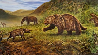 American Mastodons Lived in the North During Brief Warm Interval
