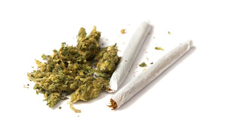 Obesity is less common in pot smokers