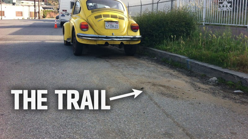How The Internet Found My Stolen Beetle