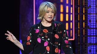 Martha Stewart Imprisoned Again, Trapped in Crowded Elevator