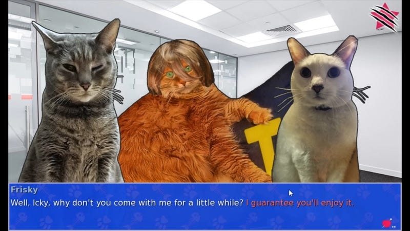 Let's Play Cat President, In Which Pictures Of Cats Run For President
