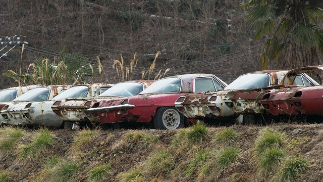 Photographer finds ten rare cars rotting in Japanese countryside