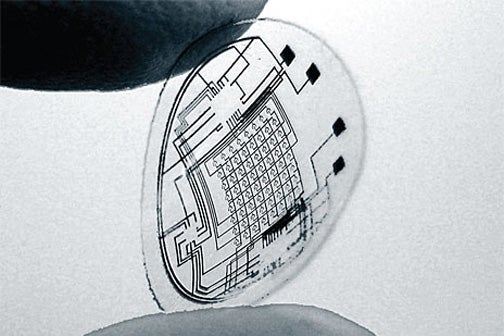 Reality-Augmenting Terminator Vision Contact Lenses Nearly Here (They're in This Bunny's Eye)