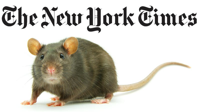 New York Times Staffers: Now Is the Time to Rat Out Your Colleagues
