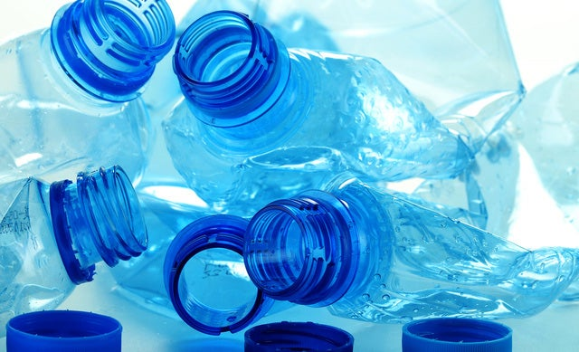 "Our Trash Has Become A New Ocean Ecosystem Called ""The Plastisphere"""