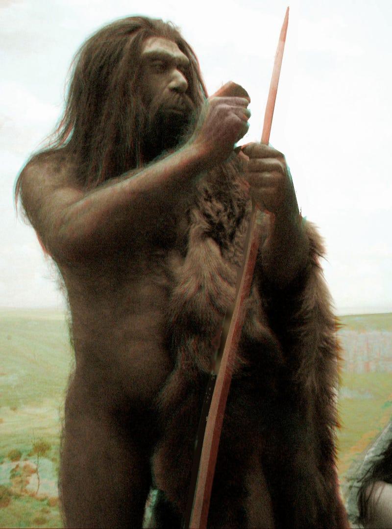 No Neanderthal Ancestors for Modern Humans