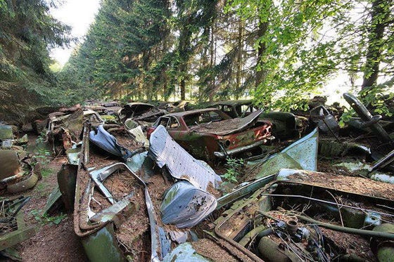 Scandinavia's Secret Car Graveyard