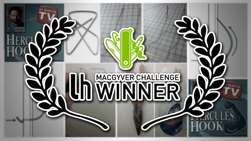Challenge Winner: Make a DIY Hercules Hook From a Paper Clip