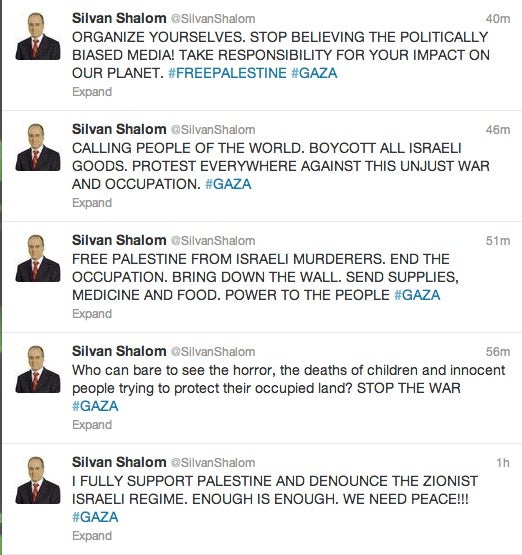 The Vice Prime Minister of Israel Was Just Hacked on Twitter and Facebook