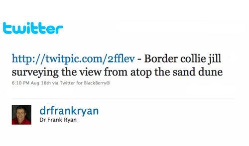 — Dr. Frank Ryan