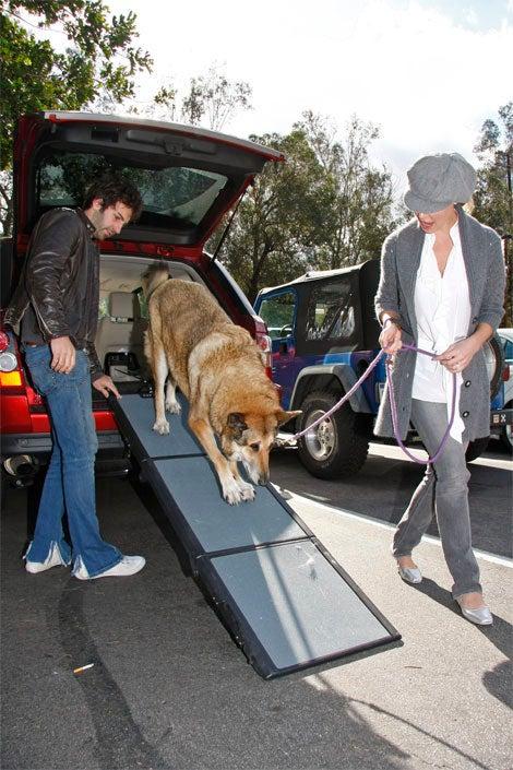 Katherine Heigl, Josh Kelley Aid The Elderly