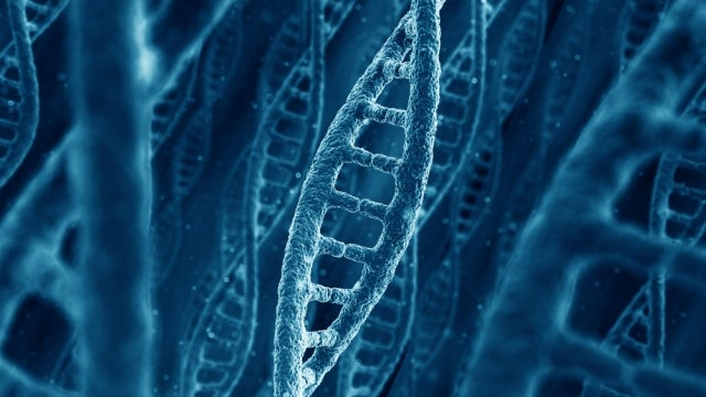 Human Gene Patenting: Yes, Companies Can Own Your DNA