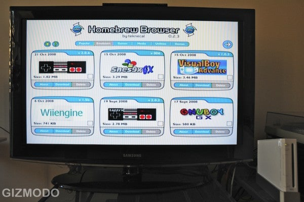The Only Wii Homebrew Guide You Will Ever Need