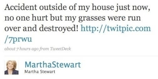 Martha Stewart's Twitter Is a Catalog of Death and Mayhem