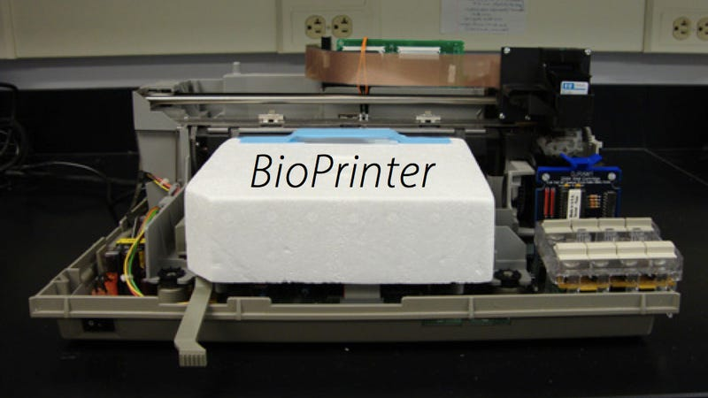 Watch How To Create Living Cells With an Old Printer