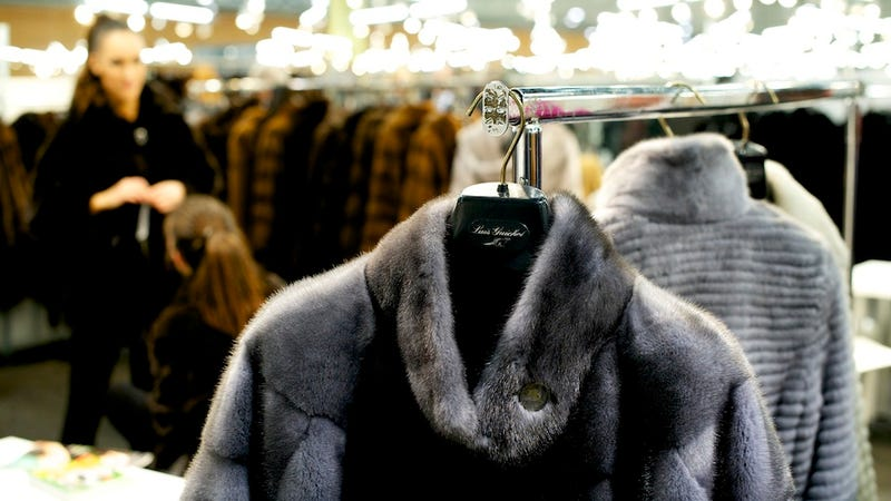 Faux Fur Pas: Saks, Bergdorf Goodman, Bloomingdale's, and Century 21 Found Guilty of Mislabeling Real Fur Coats as Faux