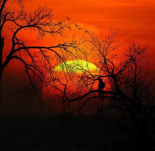 Shooting Challenge: Sunrise, Sunset