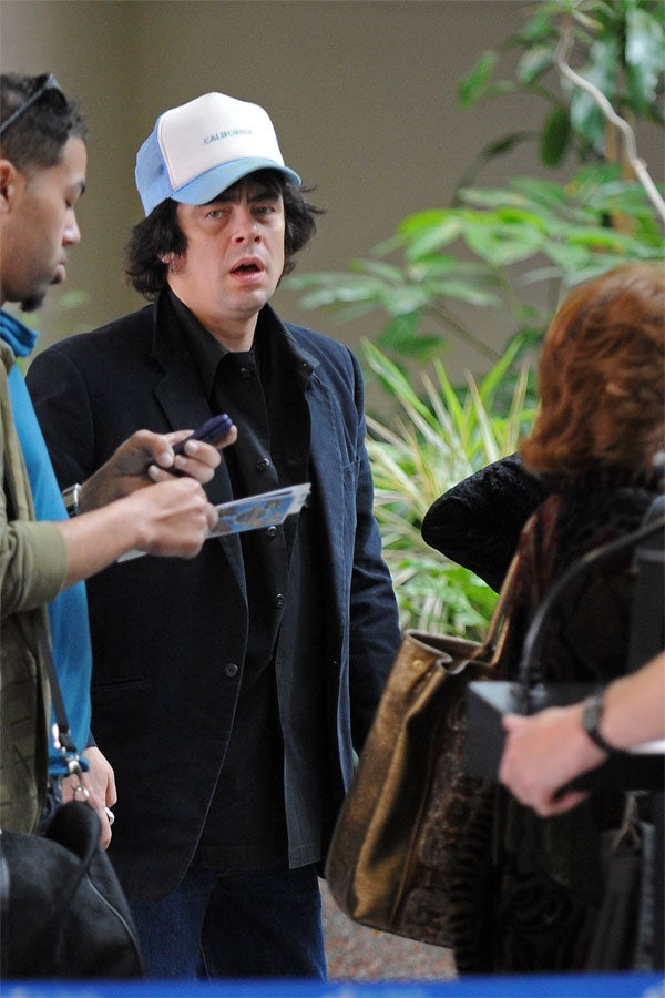 Benicio Del Toro Is As Appalled By His Accessory As We Are