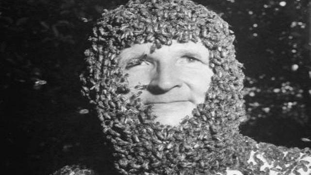 Make a beard of bees