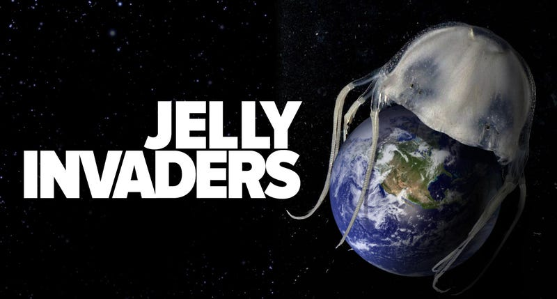 Are jellyfish taking over the world?