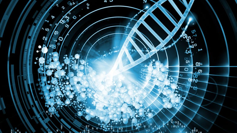 Ten Things You Probably Didn't Know About DNA