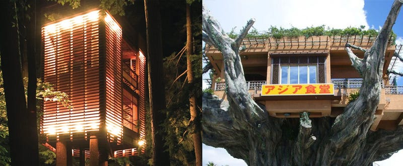 10 Amazing Treehouses That Make Us Never Wanna Come Down