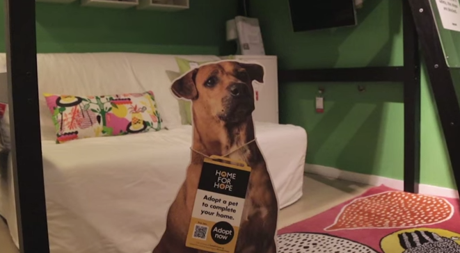 Ikea Is Pretty Sure You Need a Puppy to Go With That Billy Bookcase