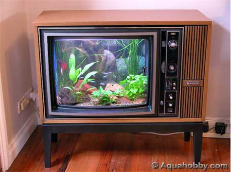Convert your old TV into a fish tank