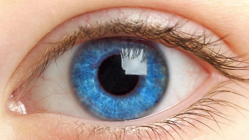 Police can now use DNA evidence to predict your eye color