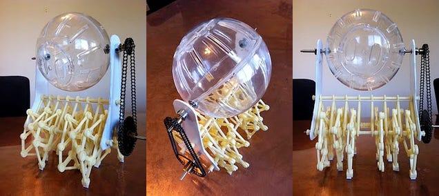 Hamster Wheel Costume Elaborate Hamster Wheel