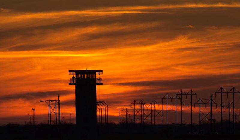 Texas Treats Pigs Better Than Prisoners