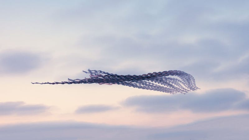 You've Never Seen Birds Fly Like This Before
