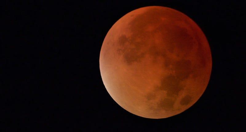 Las mejores fotos del eclipse total y la superluna de ayer for En q luna estamos hoy