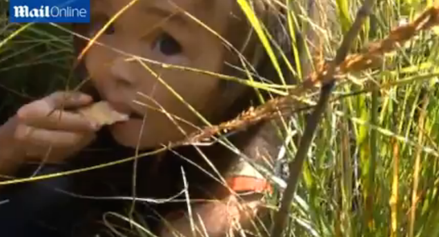 Puppy Saves Three-Year-Old Girl Who Was Lost in Siberia for 11 Days