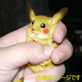 Really Fake Pikachu For Really Big Bucks