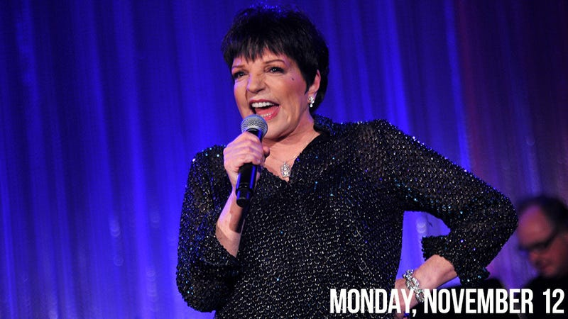 Liza Minnelli Got a Little Too Fucked Up at a Fancy Benefit