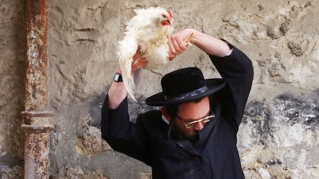 Orthodox Jews Debate Chicken-Swinging Ritual