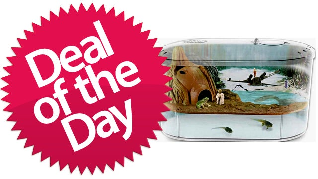 This Star Wars Science Dagobah Frog Habitat Is Your Pet Force-Training Deal of the Day