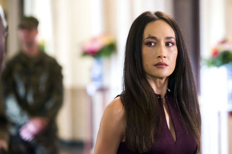 Last night's Nikita was one of the best hours of TV I've seen in ages