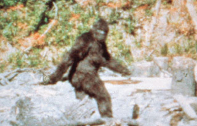 Routine Bigfoot Hunt in Oklahoma Ends With 3 Arrests, 1 Person Shot