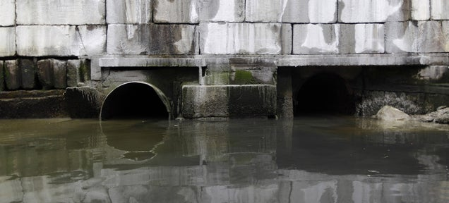 Concrete-Dissolving Bacteria Are Destroying Our Nation's Sewers