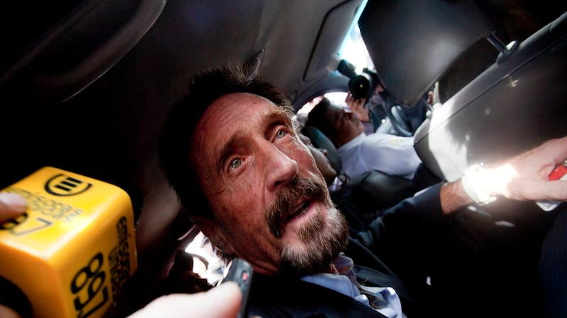 John McAfee Is Back in the U.S.
