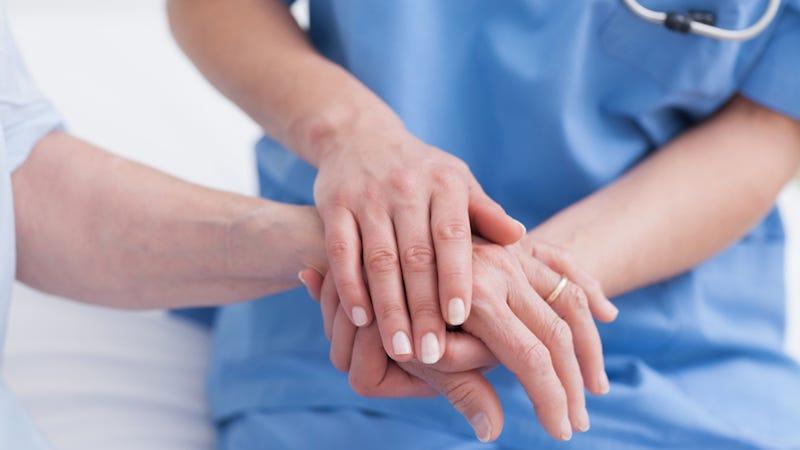 palliative care in health care essay