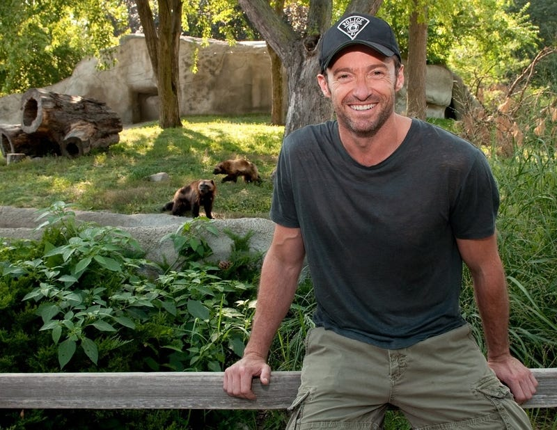 Fox wants to make a third Wolverine movie