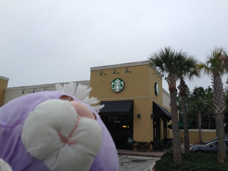 Fluffy Bunny's Daytona Vacation