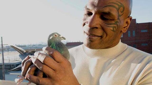 Mike Tyson's Utopian Vision